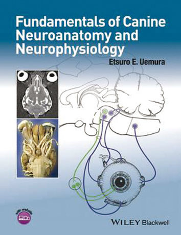 Fundamentals of Canine Neuroanatomy and Neurophysiology