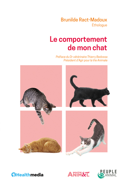 Le comportement de mon chat