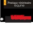 Pratique Vétérinaire Equine Numéro spécial + SVT